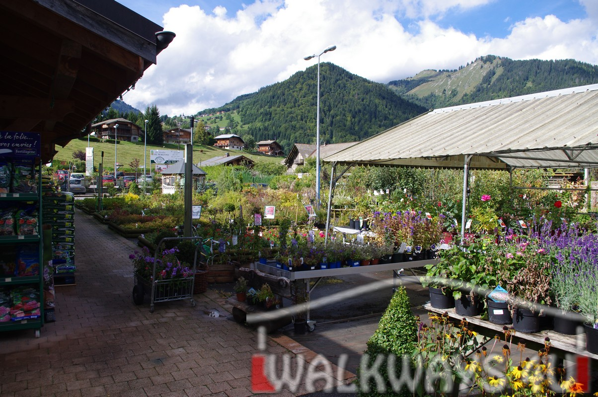 Covered walkways canopies timber, Covered outdoor walkways, wooden covered walkways and constructions