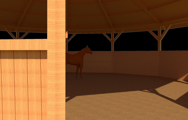Photo 27. Rond de longe est le travail des chevaux ? la longe construction en bois